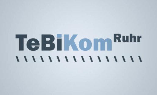 Entwicklung des Geschäftsmodells für den Projektverbund TeBiKom.Ruhr